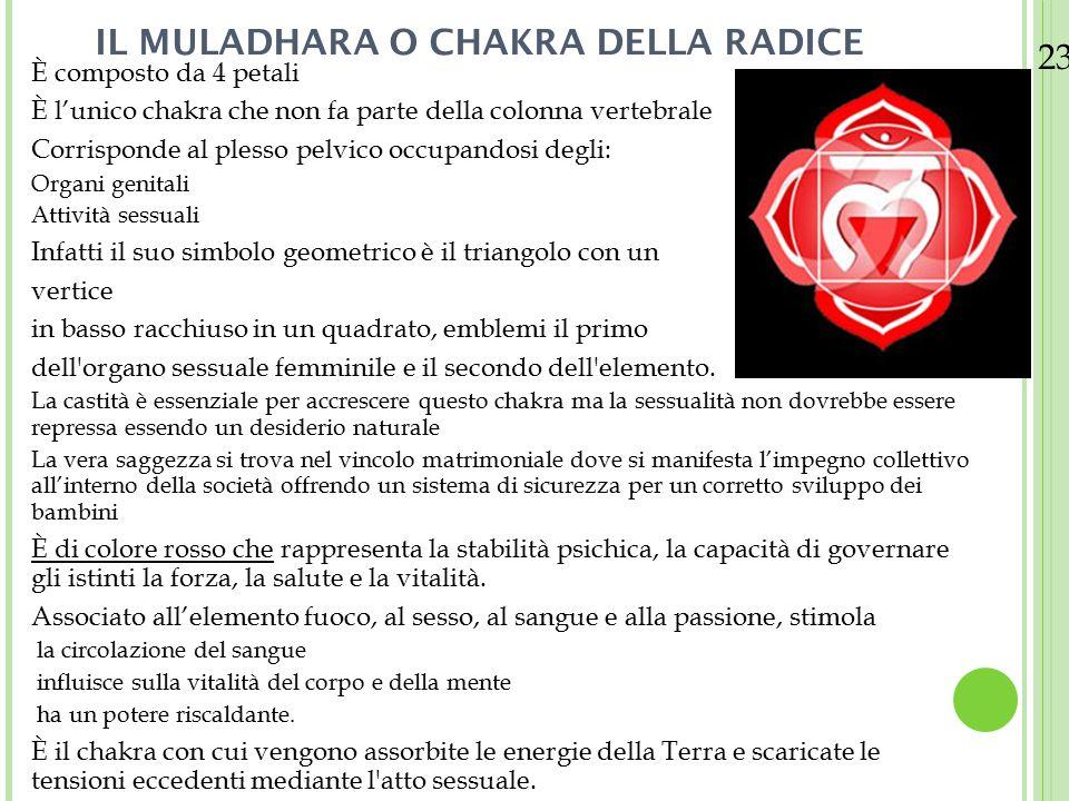 IL MULADHARA O CHAKRA DELLA RADICE