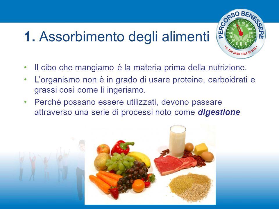 1. Assorbimento degli alimenti