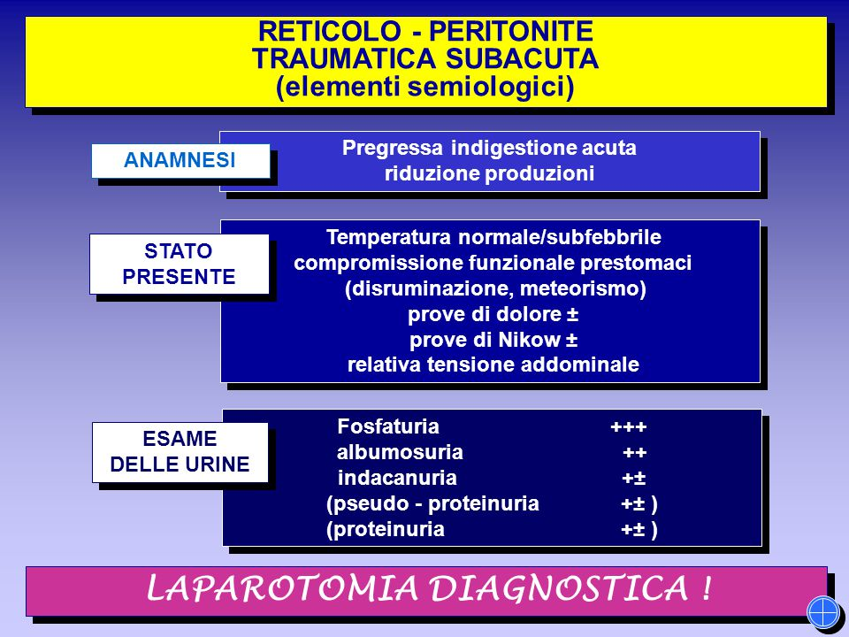 LAPAROTOMIA DIAGNOSTICA !