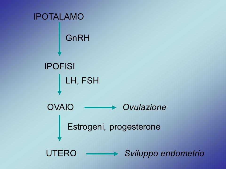 IPOTALAMO GnRH IPOFISI OVAIO LH, FSH UTERO Estrogeni, progesterone Ovulazione Sviluppo endometrio