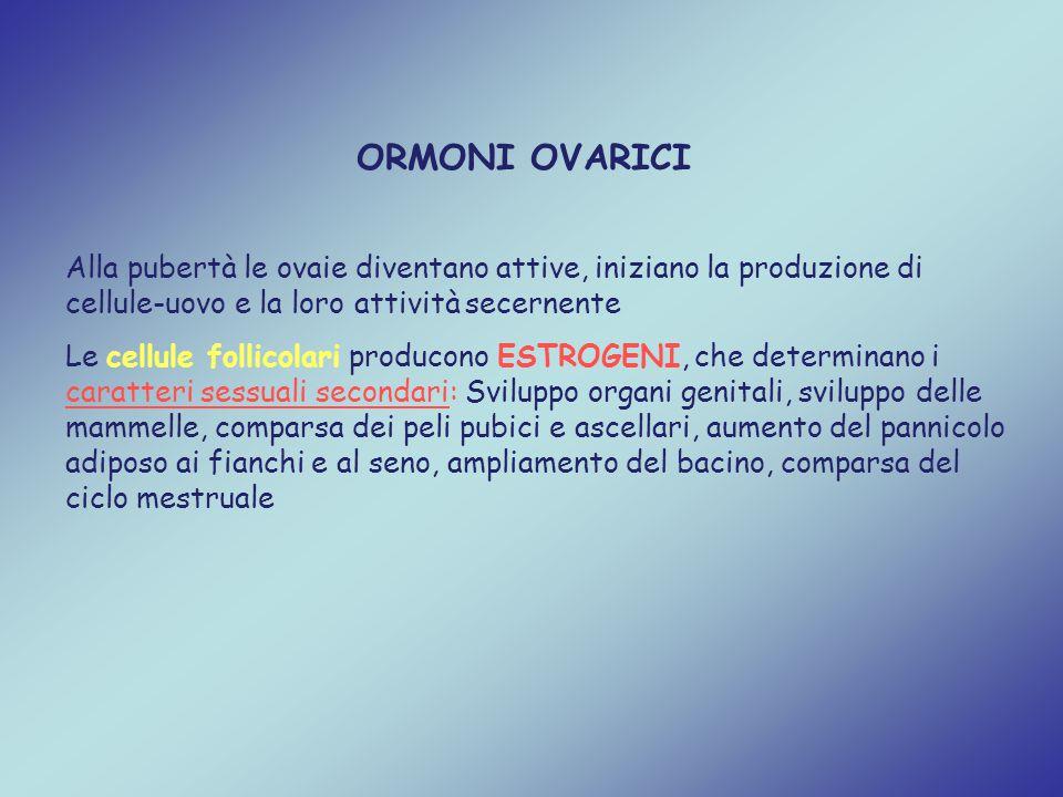 ORMONI OVARICI Alla pubertà le ovaie diventano attive, iniziano la produzione di cellule-uovo e la loro attività secernente.