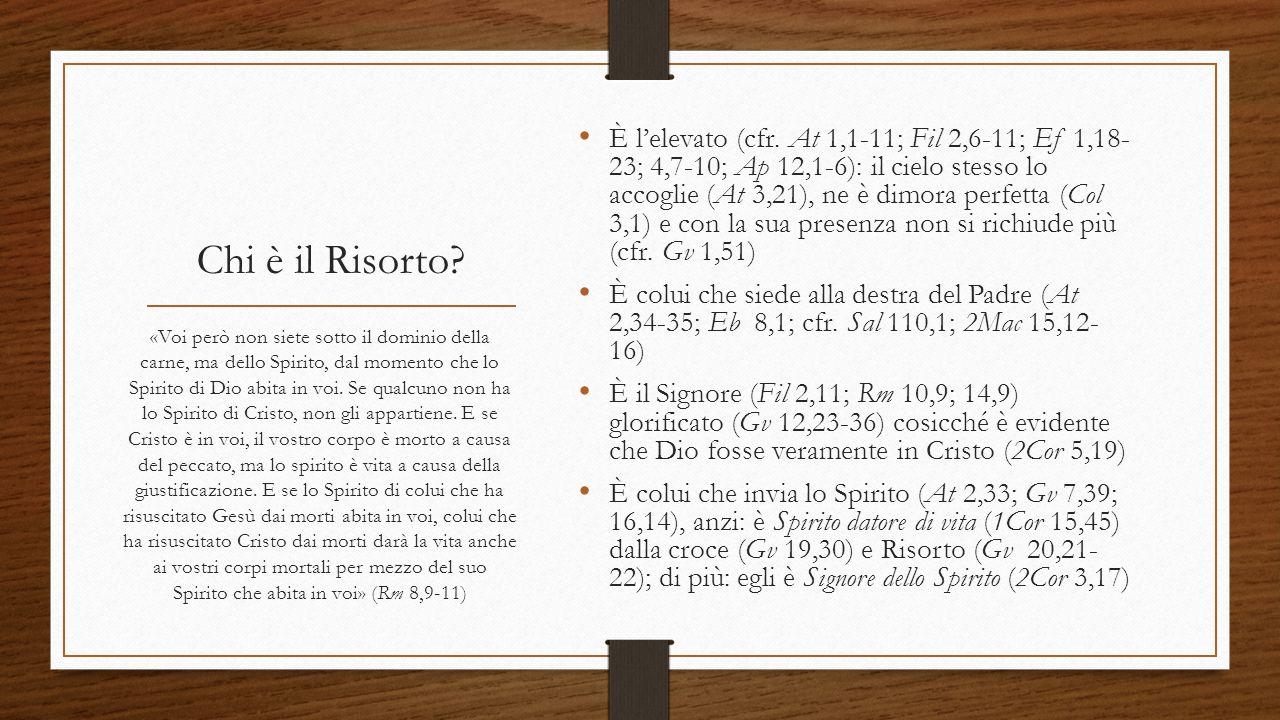È l'elevato (cfr. At 1,1-11; Fil 2,6-11; Ef 1,18- 23; 4,7-10; Ap 12,1-6): il cielo stesso lo accoglie (At 3,21), ne è dimora perfetta (Col 3,1) e con la sua presenza non si richiude più (cfr. Gv 1,51)