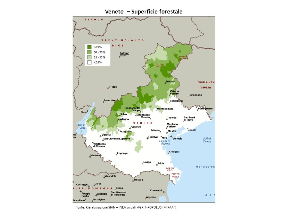 Veneto – Superficie forestale
