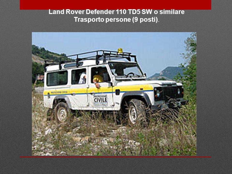 Land Rover Defender 110 TD5 SW o similare Trasporto persone (9 posti).