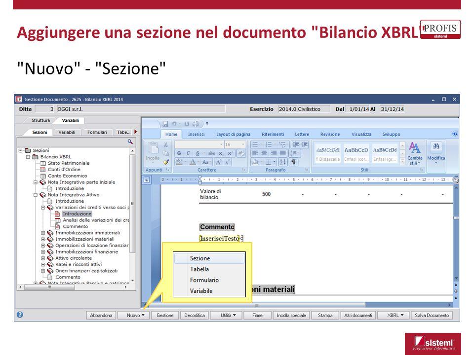 Aggiungere una sezione nel documento Bilancio XBRL