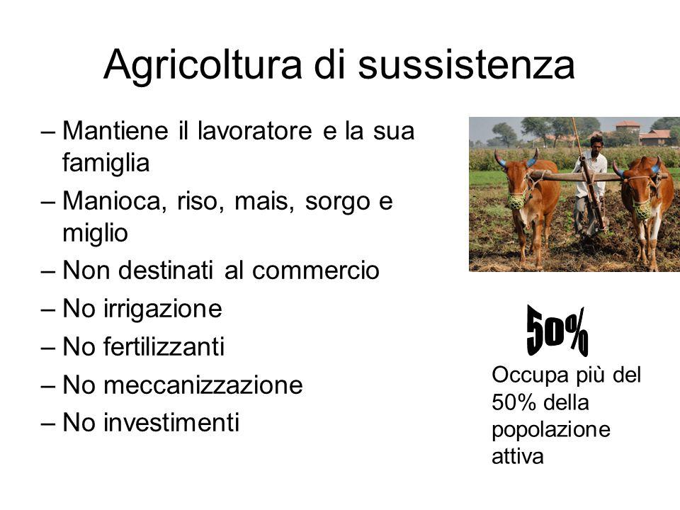 Agricoltura di sussistenza