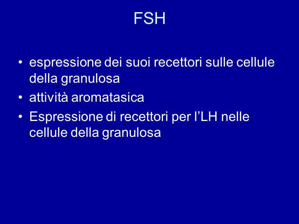 FSH espressione dei suoi recettori sulle cellule della granulosa