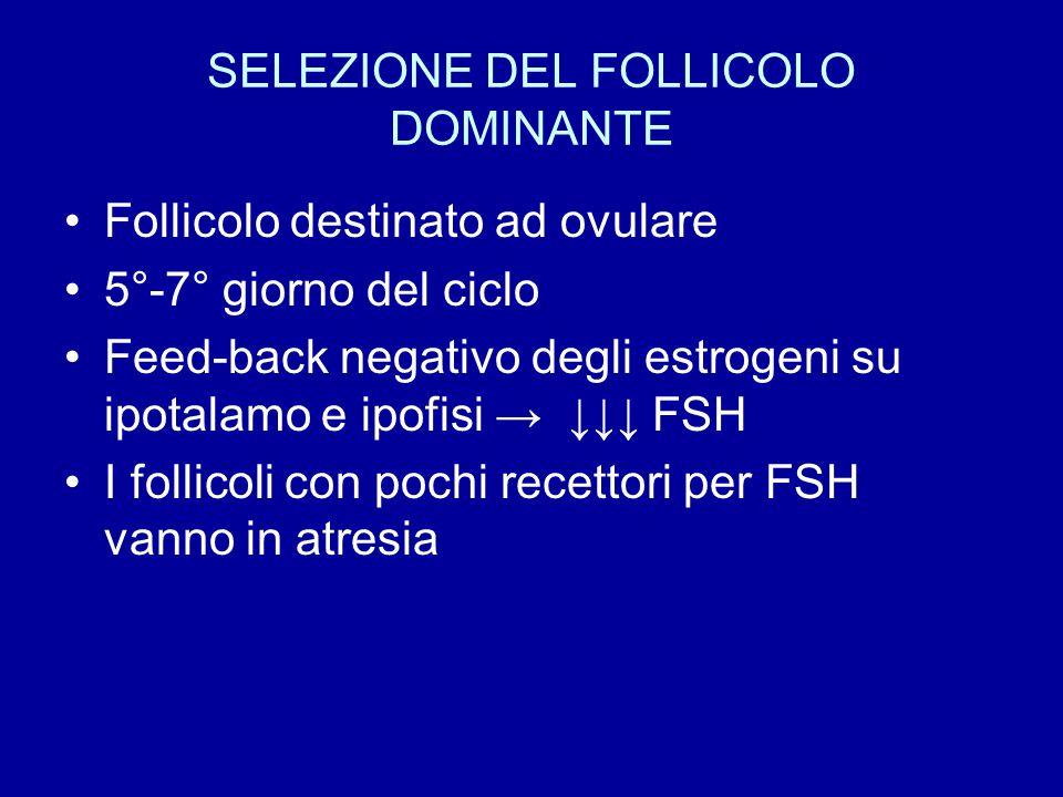 SELEZIONE DEL FOLLICOLO DOMINANTE