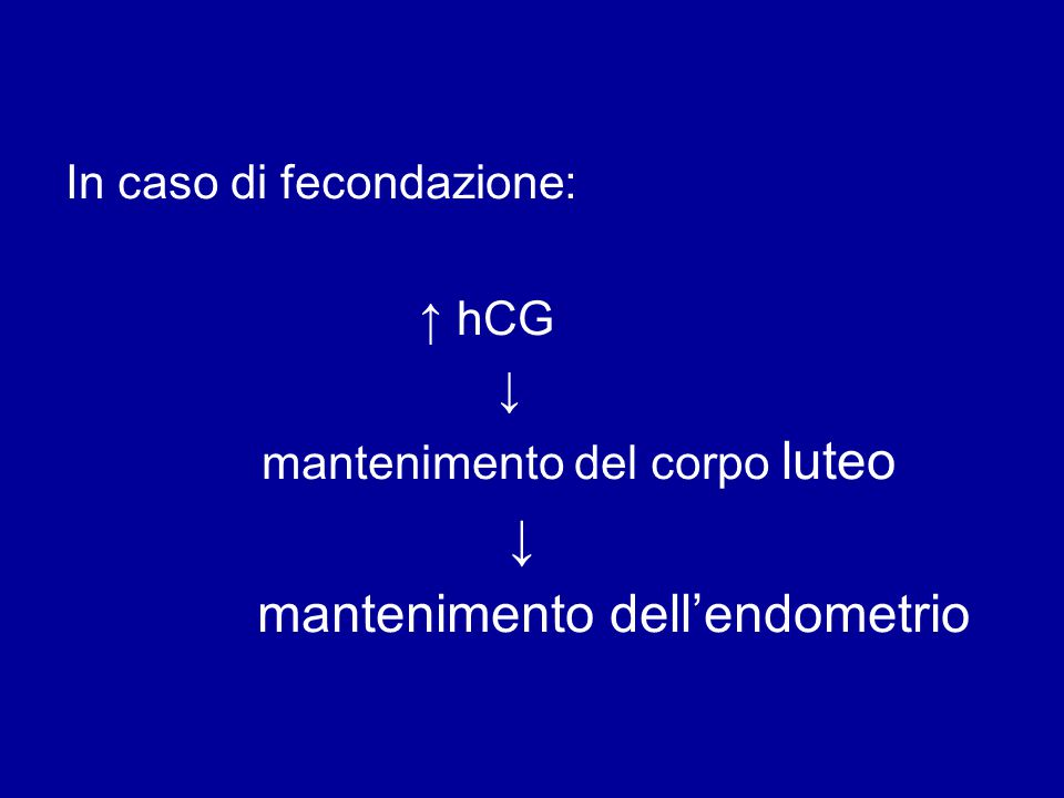 mantenimento dell'endometrio