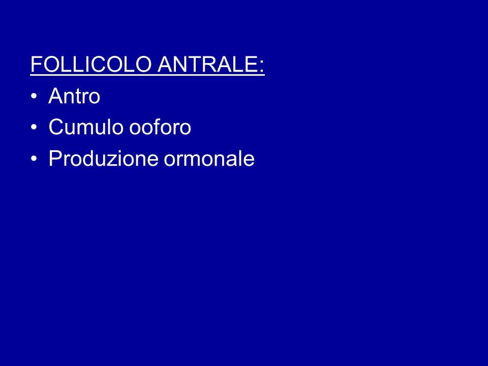 FOLLICOLO ANTRALE: Antro Cumulo ooforo Produzione ormonale