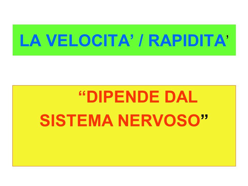 LA VELOCITA' / RAPIDITA'