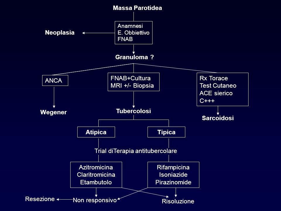 Tubercolosi Atipica Tipica