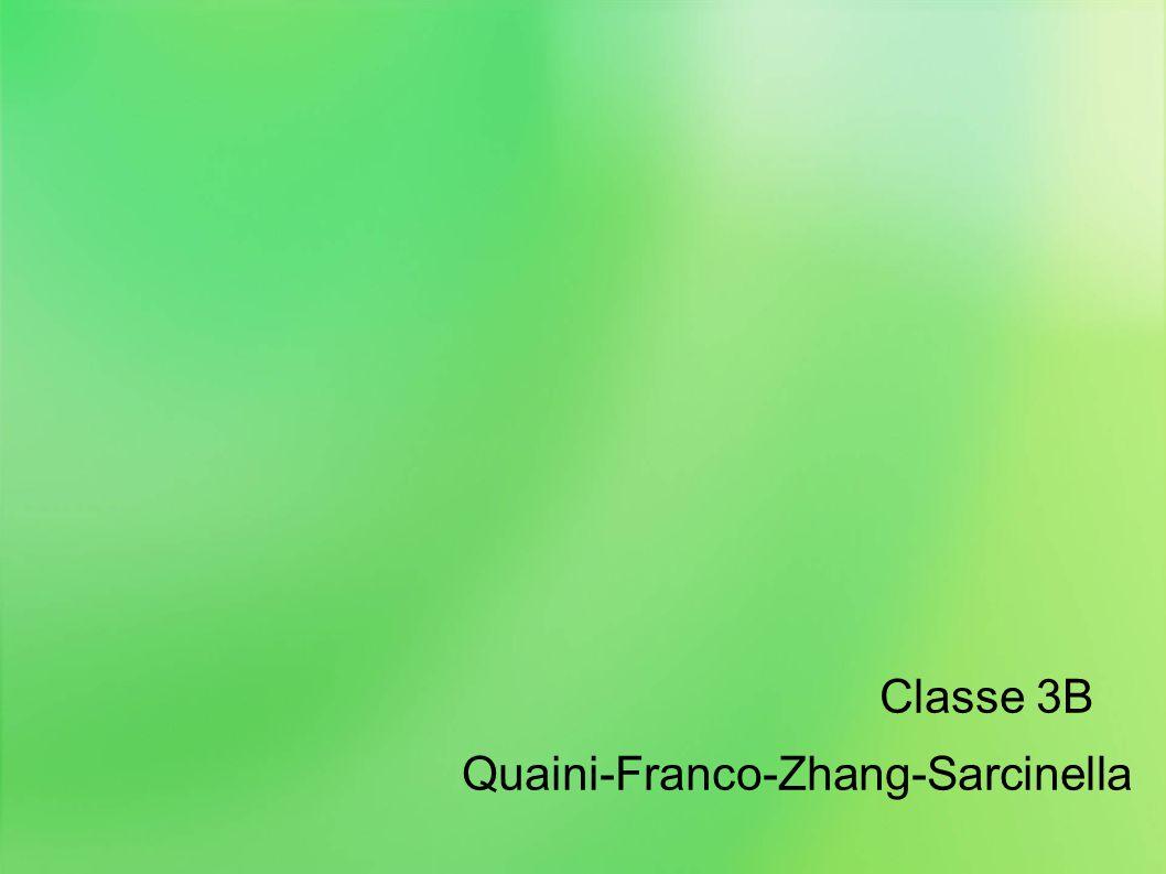 Classe 3B Quaini-Franco-Zhang-Sarcinella