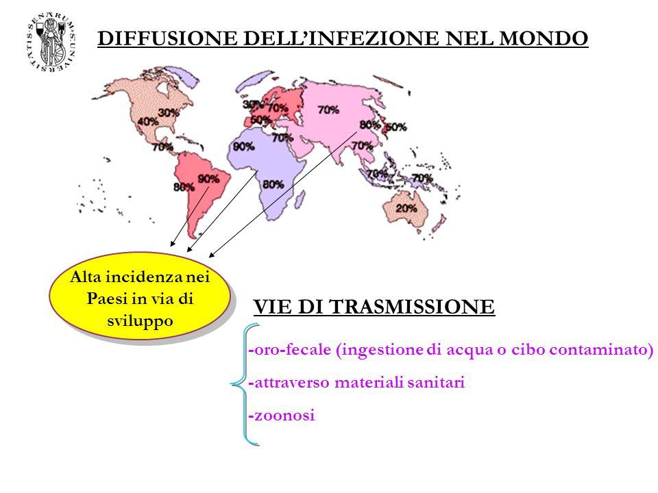 DIFFUSIONE DELL'INFEZIONE NEL MONDO