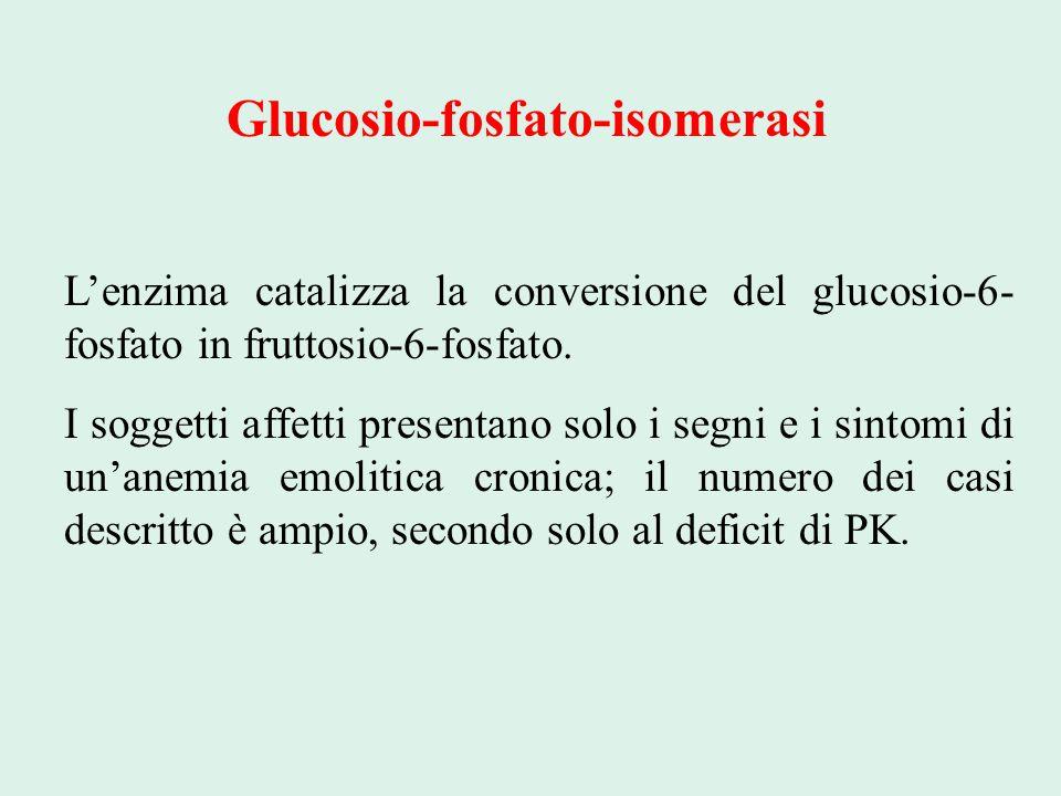 Glucosio-fosfato-isomerasi