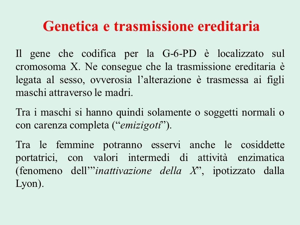 Genetica e trasmissione ereditaria