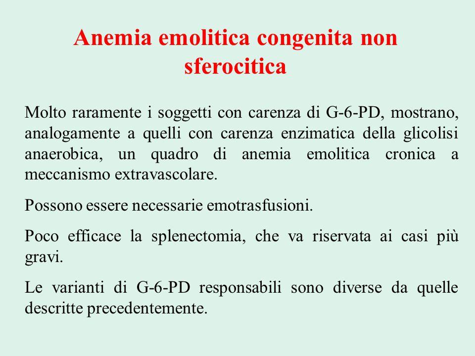 Anemia emolitica congenita non sferocitica