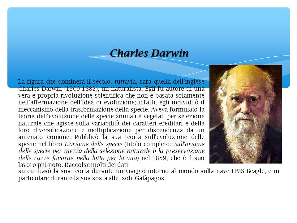 La figura che dominerà il secolo, tuttavia, sarà quella dell'inglese Charles Darwin (1809-1882), un naturalista. Egli fu autore di una vera e propria rivoluzione scientifica che non è basata solamente nell'affermazione dell'idea di evoluzione; infatti, egli individuò il meccanismo della trasformazione della specie. Aveva formulato la teoria dell evoluzione delle specie animali e vegetali per selezione naturale che agisce sulla variabilità dei caratteri ereditari e della loro diversificazione e moltiplicazione per discendenza da un antenato comune. Pubblicò la sua teoria sull evoluzione delle specie nel libro L origine delle specie (titolo completo: Sull origine delle specie per mezzo della selezione naturale o la preservazione delle razze favorite nella lotta per la vita) nel 1859, che è il suo lavoro più noto. Raccolse molti dei dati