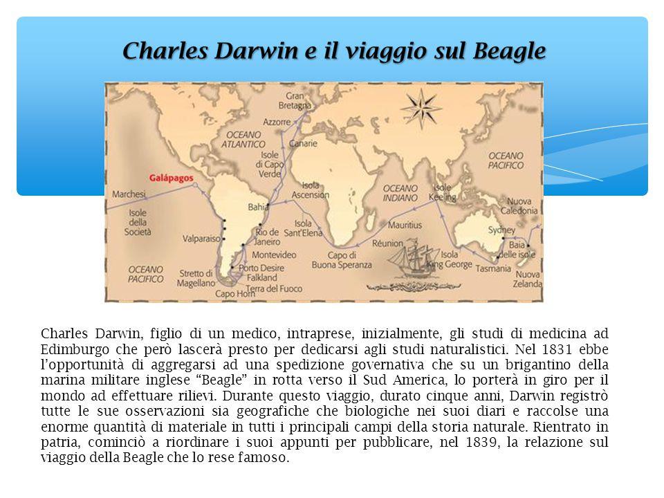 Charles Darwin, figlio di un medico, intraprese, inizialmente, gli studi di medicina ad Edimburgo che però lascerà presto per dedicarsi agli studi naturalistici.