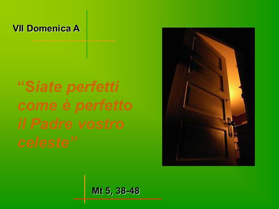 Siate perfetti come è perfetto il Padre vostro celeste