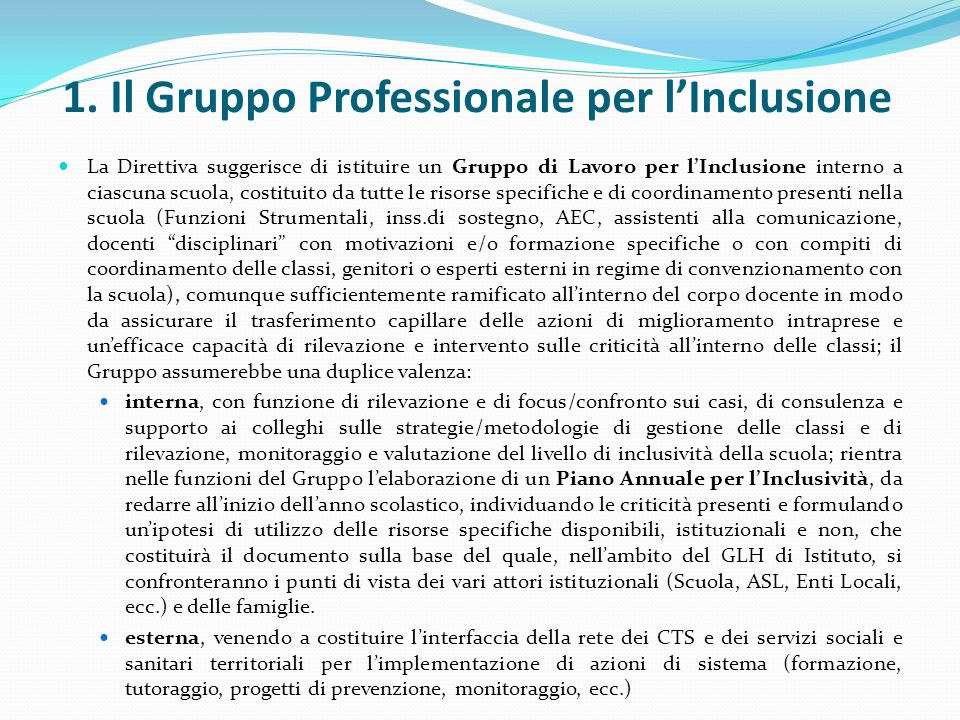 1. Il Gruppo Professionale per l'Inclusione