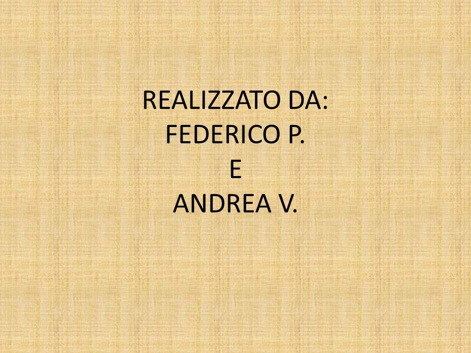 REALIZZATO DA: FEDERICO P. E ANDREA V.