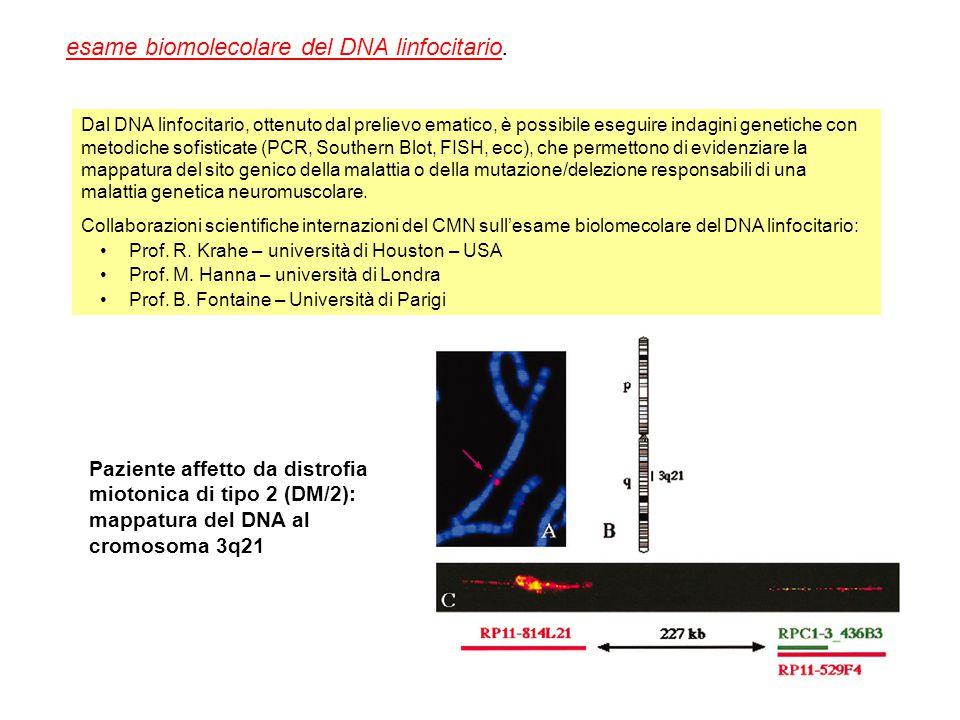 esame biomolecolare del DNA linfocitario.