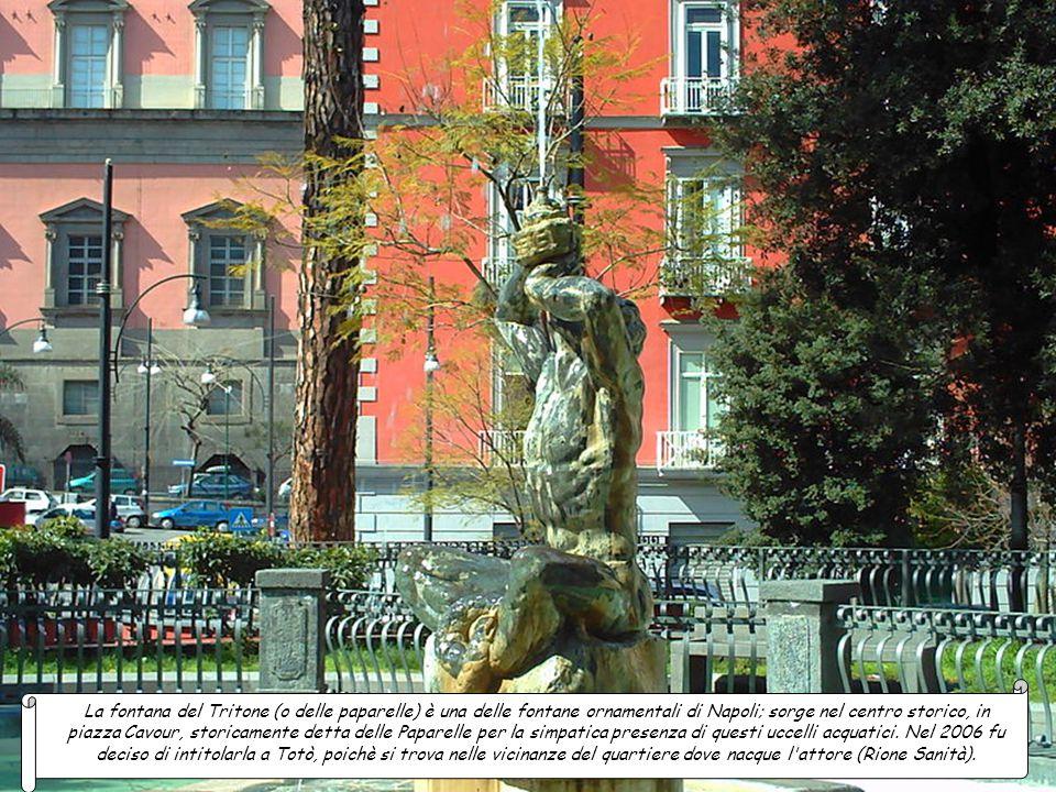 La fontana del Tritone (o delle paparelle) è una delle fontane ornamentali di Napoli; sorge nel centro storico, in piazza Cavour, storicamente detta delle Paparelle per la simpatica presenza di questi uccelli acquatici.