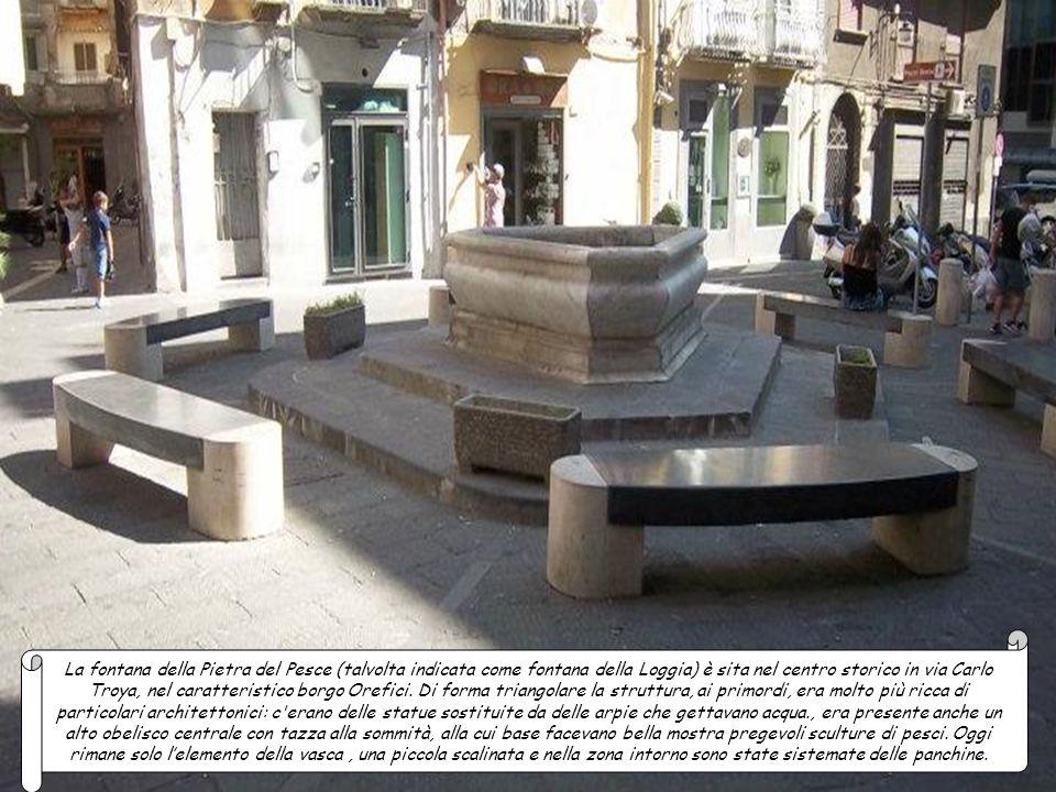 La fontana della Pietra del Pesce (talvolta indicata come fontana della Loggia) è sita nel centro storico in via Carlo Troya, nel caratteristico borgo Orefici.