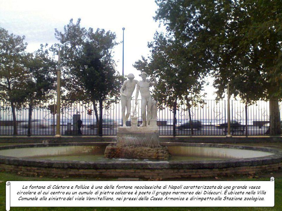 La fontana di Cástore e Pollúce è una delle fontane neoclassiche di Napoli caratterizzata da una grande vasca circolare al cui centro su un cumulo di pietre calcaree è posto il gruppo marmoreo dei Dióscuri.
