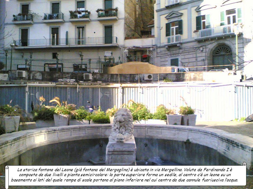 La storica fontana del Leone (già fontana del Mergoglino) è ubicata in via Mergellina.