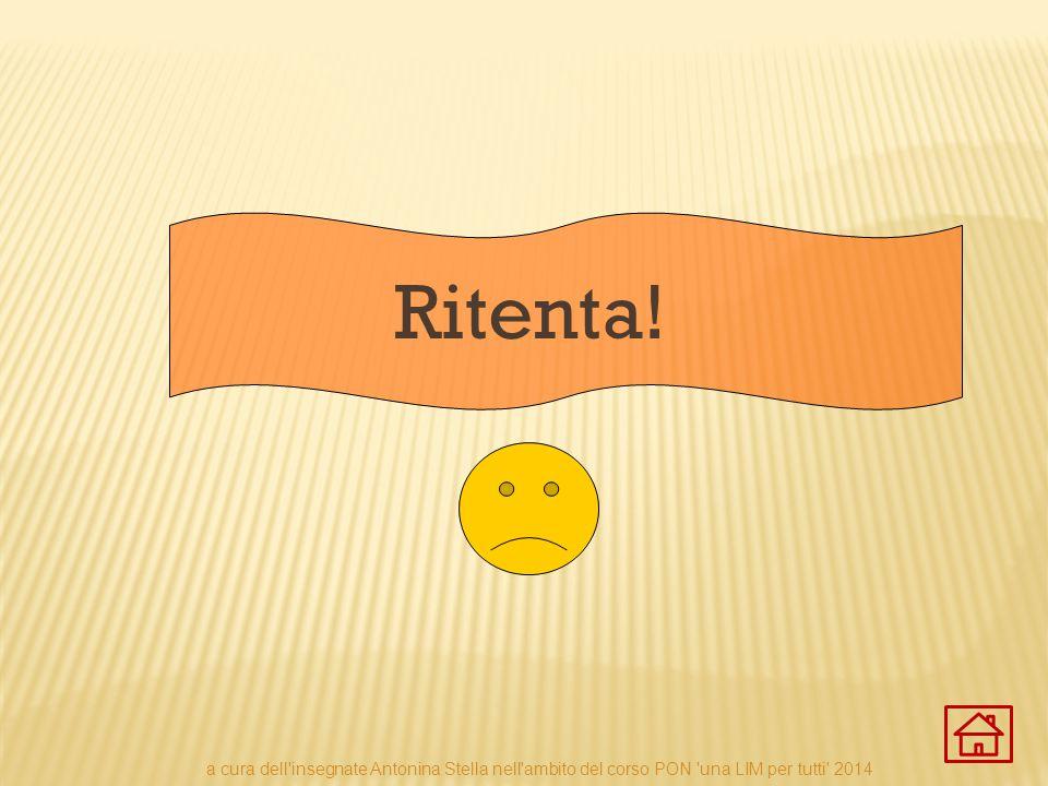 Ritenta! a cura dell insegnate Antonina Stella nell ambito del corso PON una LIM per tutti 2014