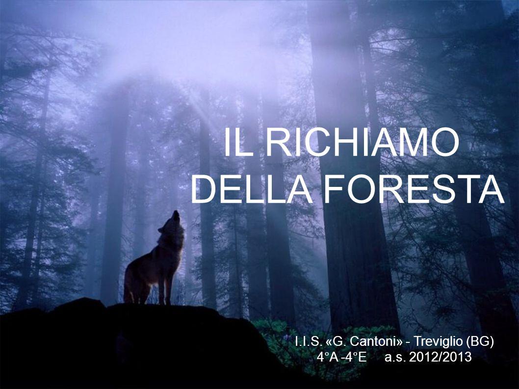 I.I.S. «G. Cantoni» - Treviglio (BG)