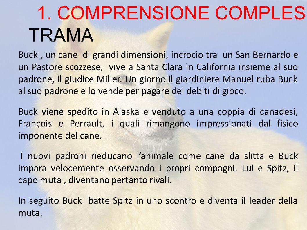 TRAMA 1. COMPRENSIONE COMPLESSIVA