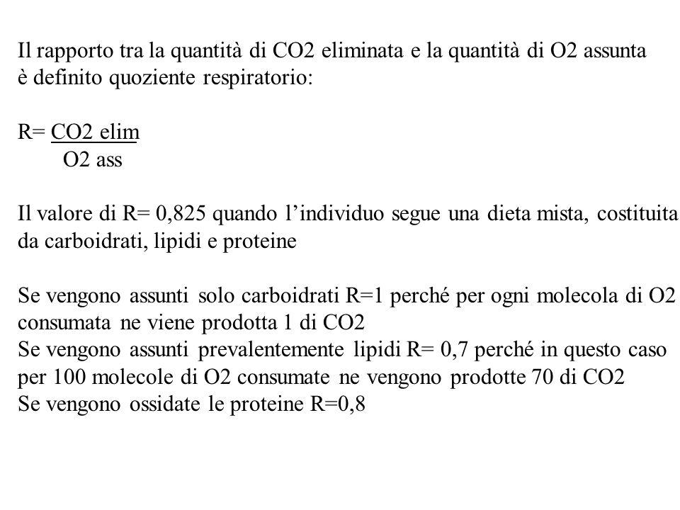 Il rapporto tra la quantità di CO2 eliminata e la quantità di O2 assunta