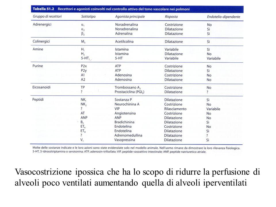 Vasocostrizione ipossica che ha lo scopo di ridurre la perfusione di