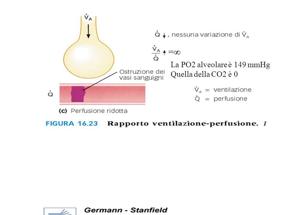 = La PO2 alveolare è 149 mmHg Quella della CO2 è 0