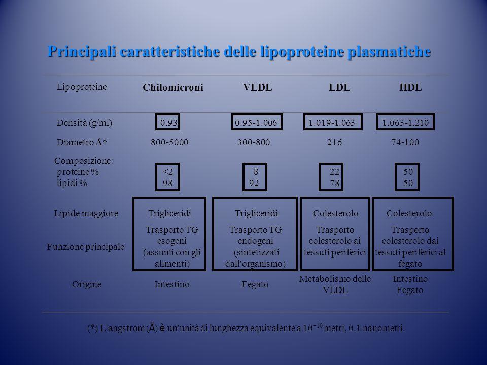 Principali caratteristiche delle lipoproteine plasmatiche