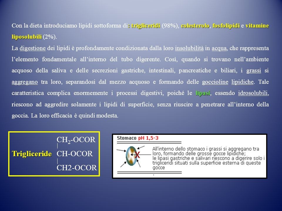 CH2-OCOR Trigliceride CH-OCOR .