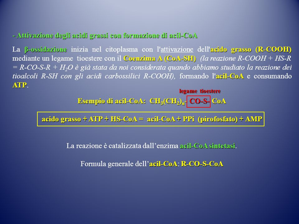 Esempio di acil-CoA: CH3(CH2)n- CO-S- CoA