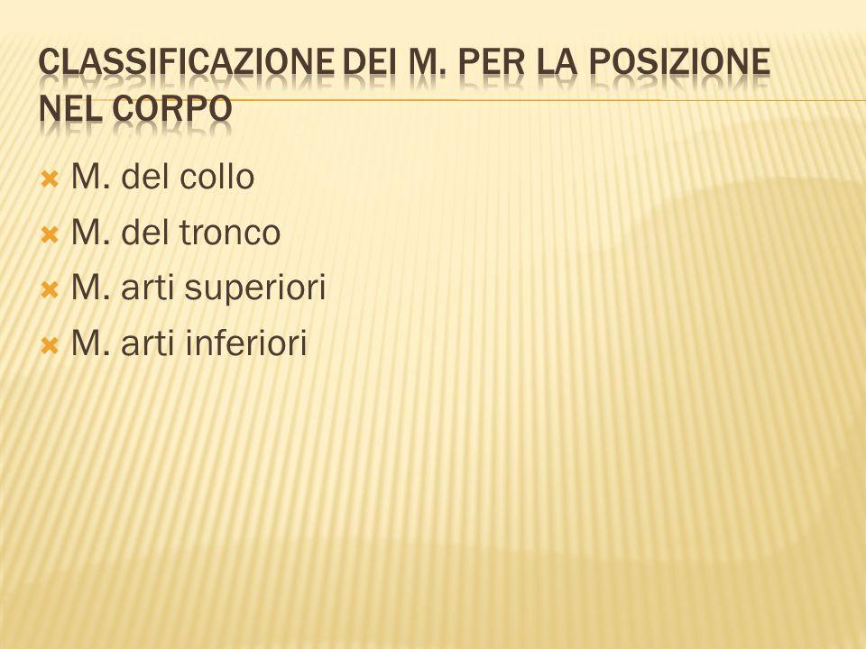 Classificazione dei m. per la posizione nel corpo