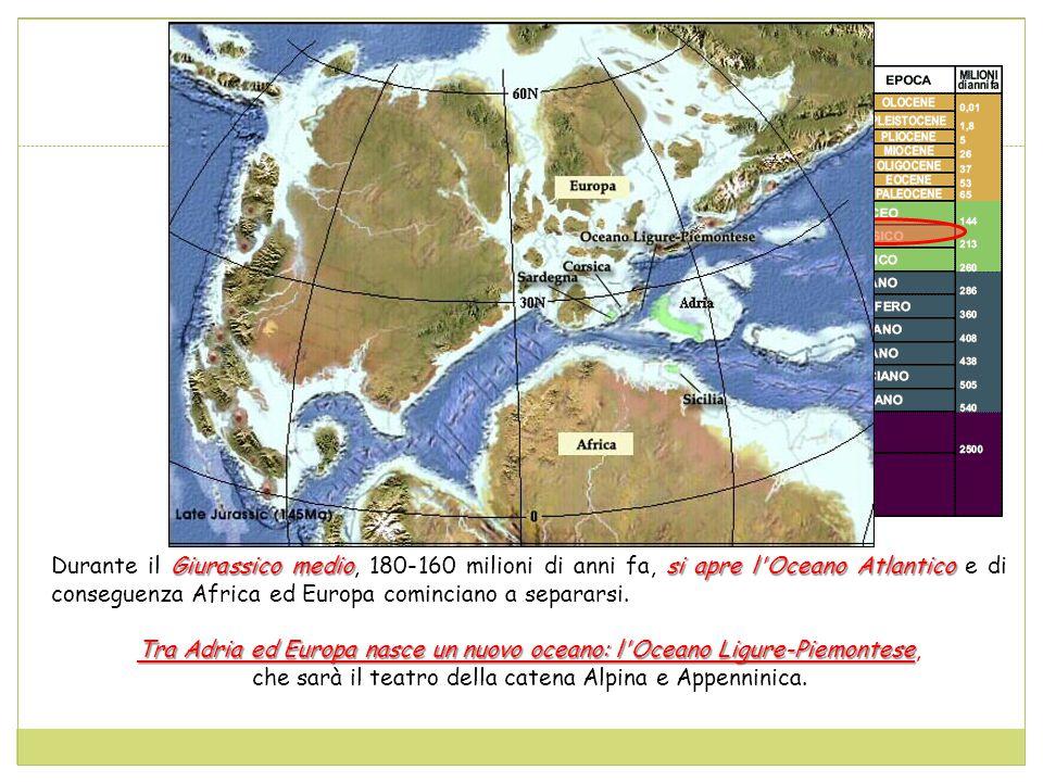 Tra Adria ed Europa nasce un nuovo oceano: l Oceano Ligure-Piemontese,