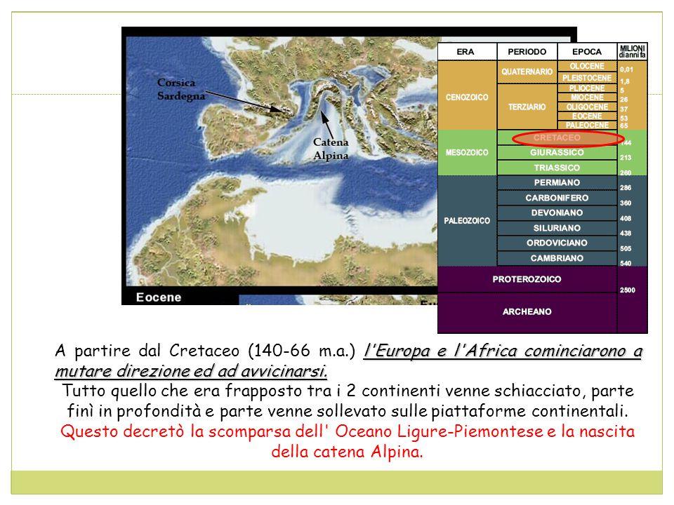 A partire dal Cretaceo (140-66 m. a