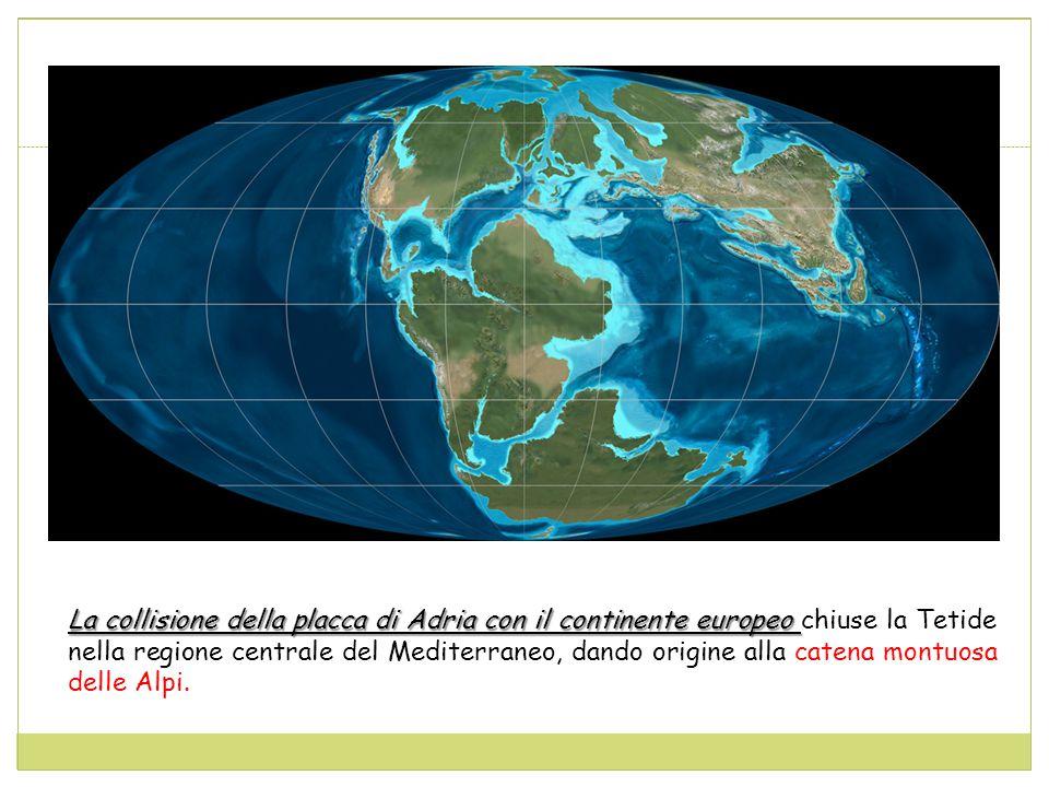 La collisione della placca di Adria con il continente europeo chiuse la Tetide nella regione centrale del Mediterraneo, dando origine alla catena montuosa delle Alpi.