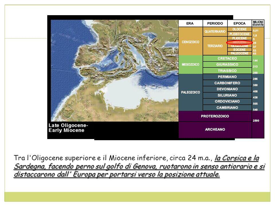 Tra l Oligocene superiore e il Miocene inferiore, circa 24 m. a