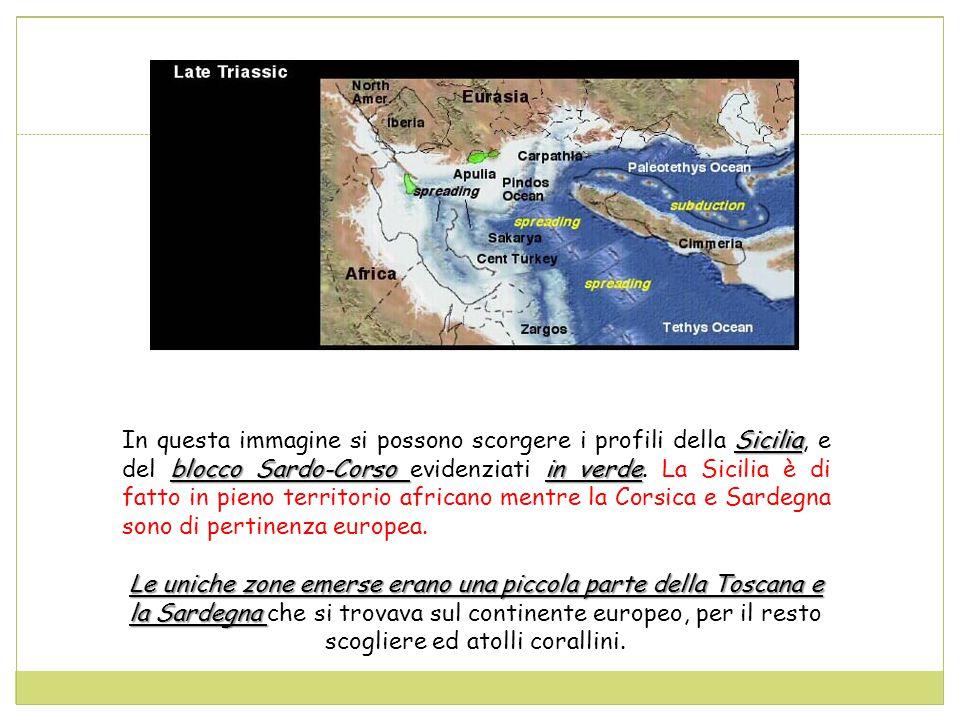 In questa immagine si possono scorgere i profili della Sicilia, e del blocco Sardo-Corso evidenziati in verde. La Sicilia è di fatto in pieno territorio africano mentre la Corsica e Sardegna sono di pertinenza europea.