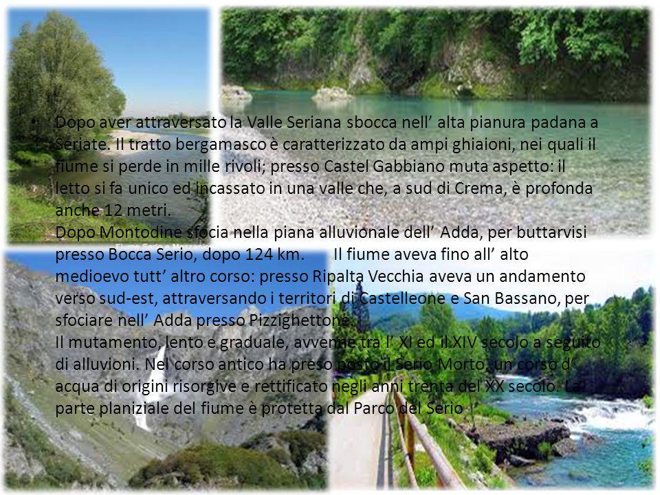 Dopo aver attraversato la Valle Seriana sbocca nell' alta pianura padana a Seriate.