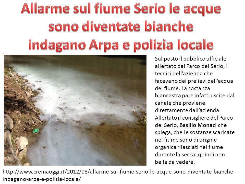 Allarme sul fiume Serio le acque sono diventate bianche indagano Arpa e polizia locale