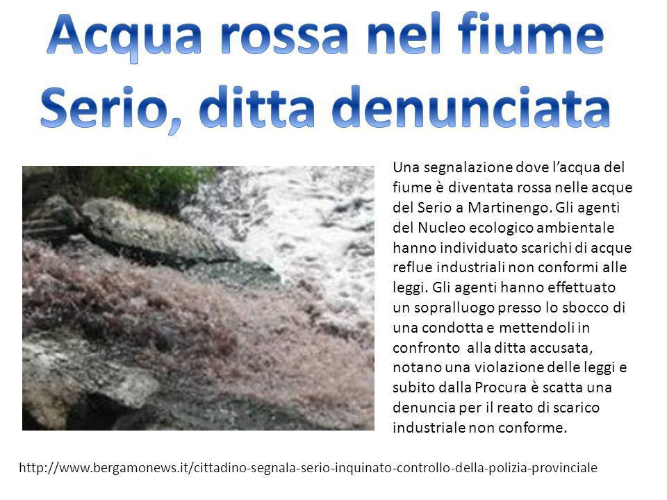 Acqua rossa nel fiume Serio, ditta denunciata