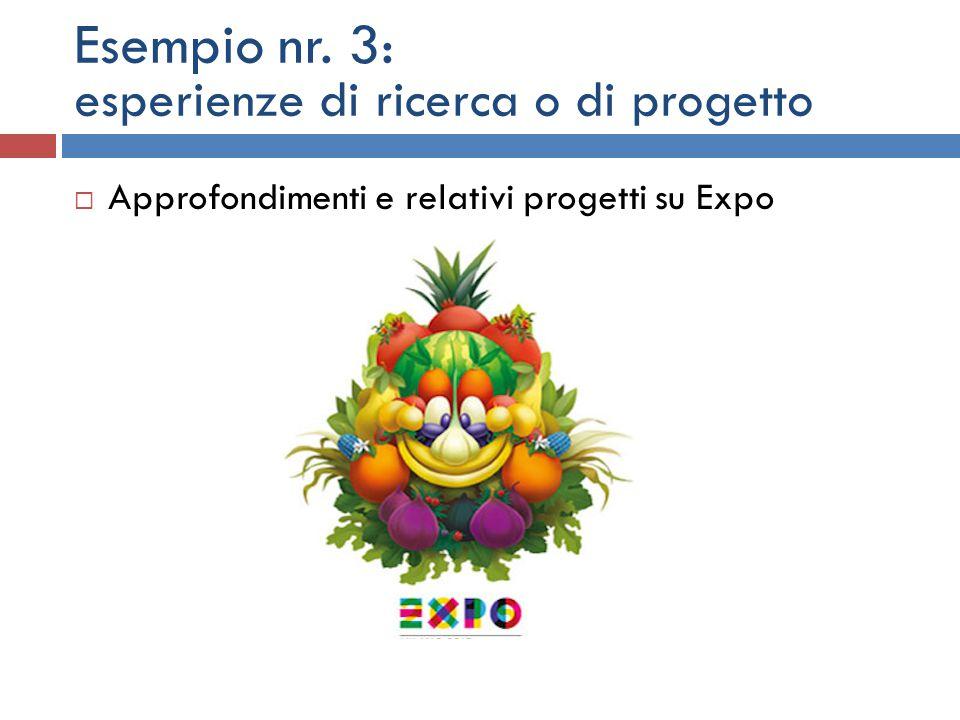 Esempio nr. 3: esperienze di ricerca o di progetto